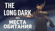 The long dark - where to find moose?