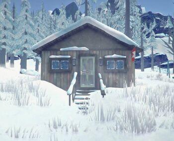 Маленький дом с канадским флагом