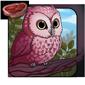 Sakura Owlet
