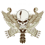 10th Special Ops Division Insignia