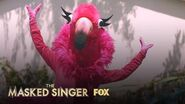 Who Is Flamingo? Season 2 THE MASKED SINGER