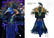 Original-Peacock