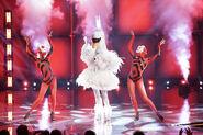 Swan-performance