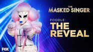 The Poodle Is Revealed Season 1 Ep