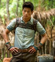 Minho-the-maze-runner-37615140-1200-1000 1