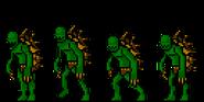 Beta Turtleman 8