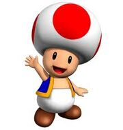 Toad8