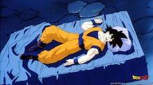 Goku asleep