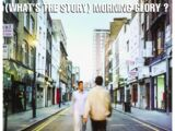 (What's the Story) Morning Glory? (Oasis album)