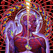 Toollateralus