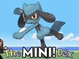 Riolu! The MiniDex 2!