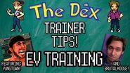 Trainer Tips 6 Thumbnail