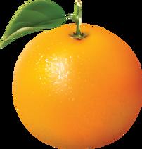 Orange PNG766