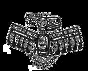 Cassiethunderbird
