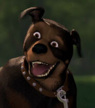 Nugent the Dog in Over the Hedge