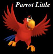 Parrot Little