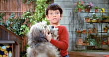 Bobby Brady as Buzz