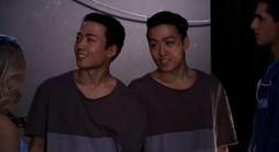 Gemini twins season 4 stof