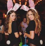 Megan Mackenzie Bunny