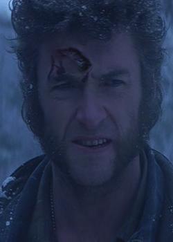 Wolverine Healing