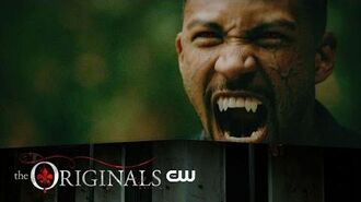 The Originals - 4x02 No Quarter