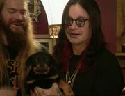 Ozzy's new dog birthday
