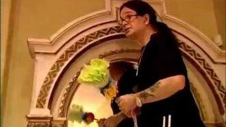 Ozzy Osbourne Vs. a stray cat...