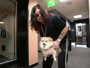 Ozzy humps a dog