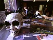 Jack room skull