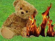 Teddy go boom