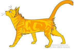 Lionkit