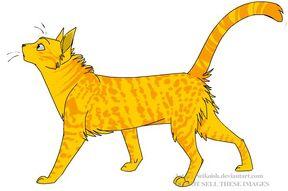 Cheetahfur