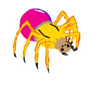 Pencil Spider