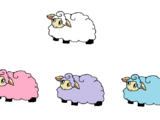 Candy Sheep