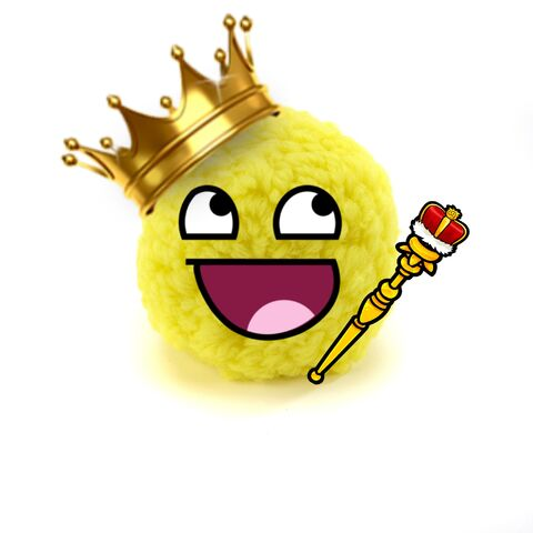 File:King Fluffy.jpg