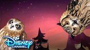 Episode 4 Look Hooo's Talking The Owl House Disney Channel