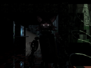 Kittystandingincam7