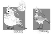 Fitoria Bird Design