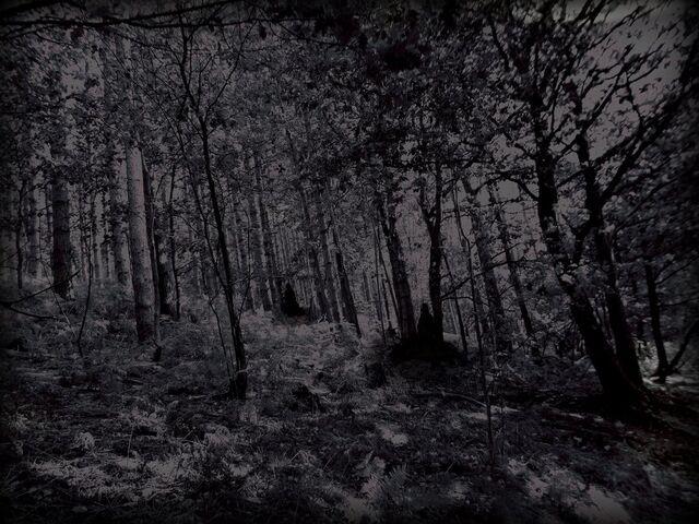 File:Unhallowed ground by kikimj-d4ai9t5.jpg