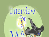 Interview for a Wizard (book)