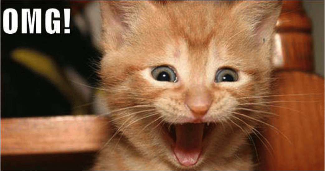 Omg Excited Face Cat Funny Picture Png