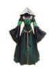 C435 Carnival costumes i01 Witch