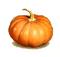 C427 Vegetable crop i06 Huge pumpkin