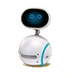 C488 Technological progress i06 Companion robot