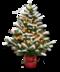 C191 Symbols of the holidays i06 Christmas tree