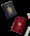 C195 Secret Code i05 Passports