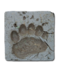 C047 Animal Tracks i05 Bear Tracks