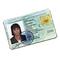 C392 False Identity i06 Fake passport