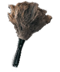 C296 Useful objects i01 Feather duster