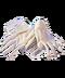 C307 Handling evidence i01 Set gloves